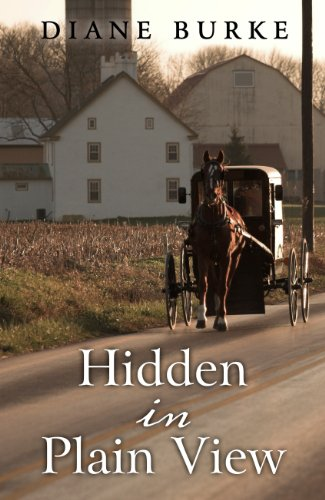 Hidden in Plain View (Thorndike Press Large Print Christian Mystery)