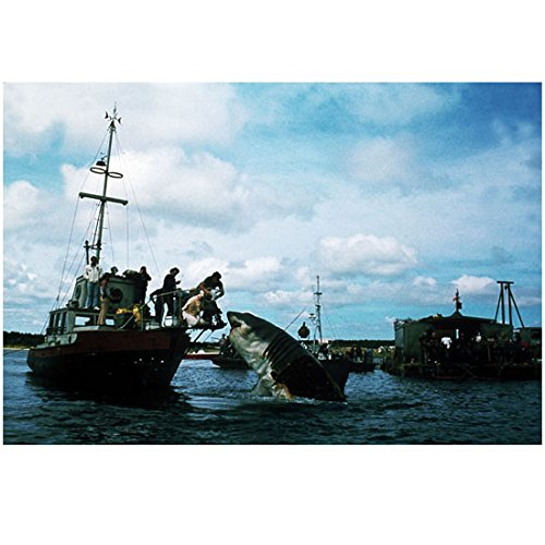 "Roy Scheider and Richard Dreyfuss with Others Looking at ""Bruce"" on Boat in Jaws 8 x 10 Inch Photo"