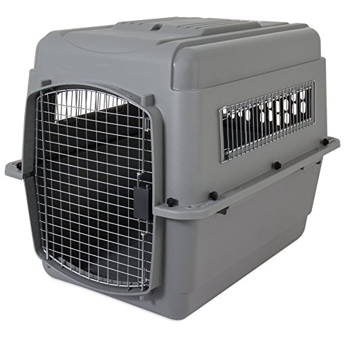 Petmate Sky Kennel for Pets from 30 to 50-Pound, Light Gray