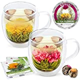 Teabloom Extra-Large Insulated Double Wall Glass Mugs & Blooming Tea Flowers (Set of 2 Mugs + 2 Flowering Teas) - Tea Gift Set with 18 oz Borosilicate Glass Mugs & Flowering Teas - Twin Harmony Mugs