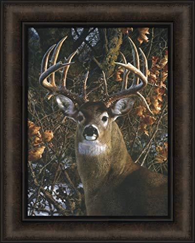 an Autumn Gentleman by Carl Brenders 16x20 Whitetail Deer Buck Framed Art Print Wall Décor Picture