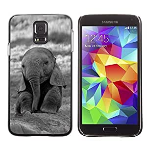 Cute Baby Elephant Animal Design Hard Case Cover for Samsung Galaxy S5 BY TOBETO