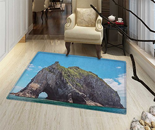 Beach Rugs for Bedroom Famous Elephant Shape Rock with the Grand Hole in Bay of Islands Nz Cavern Peaceful Door Mat Increase 24