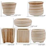 winemana 6 in Set 3 Inch Ceramic Succulent Plant