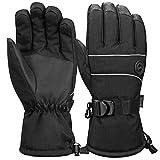 Terra Hiker Waterproof Winter Warm Ski Gloves 3M Thinsulate Snowmobile Cold Weather Gloves for Men, Women, Adult