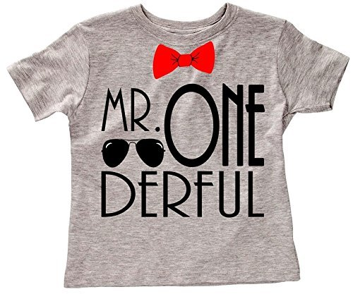 Amazon Applecopter First Birthday Smash Cake Outfit Mr ONEderful Shirt Boy Boys 1st Photo Shoot Unisex Fit Handmade