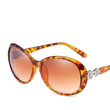 Amazon.com: Gafas de sol de cristal de sol con marco grande ...