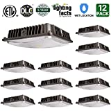 12 Pack Hykolity 45W LED Canopy Light Commerical Grade Weatherproof Outdoor High Bay Balcony Carport Driveway Ceiling Light [175W-200W HID/HPS Equivalent] 4200lm 5000K DLC Qualified
