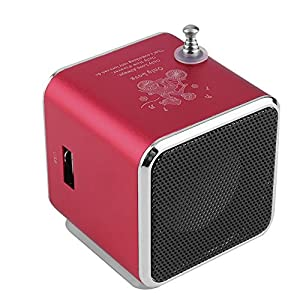 Portable Micro USB Mini Stereo Super Bass Speaker Music MP3 FM Radio