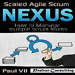 Scaled Agile Scrum: Nexus: How to Manage Multiple Scrum Teams  | Paul Vii