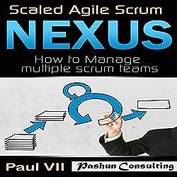 Scaled Agile Scrum: Nexus