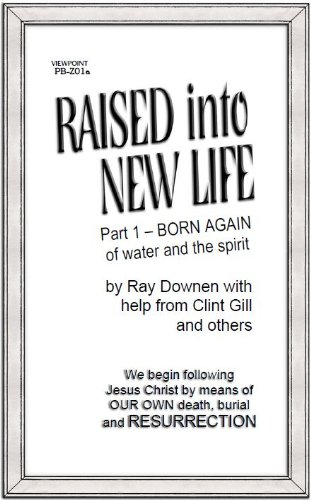Raised Into New Life (Viewpoint Book 1)