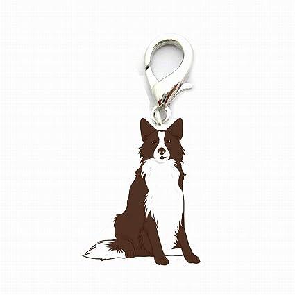 Bonio - Llavero de Metal para identificación de Perro, diseño de Perro, Metal, Border Collie, 25 cm