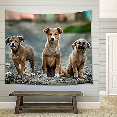 With Expert Quality, Magnificent Visual, Three Cute Little Dog Fabric Wall