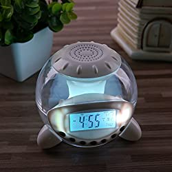 Alarm Clock, Onego Digital Clock Wake Up Light Clock with 6 Natural Sounds for Kids and Adults