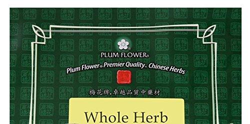 Plantago азиатская порошок листьев / Che Qian Цао Фен, 16oz или 1 фунт Bulk порошок травы