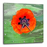 3dRose Poppy Flower Wall Clock, 10 by 10-Inch For Sale