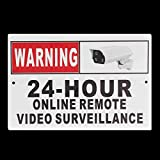 QOJA 30 x 20cm (12'' x 8'') 24 hour online remote video surveillance