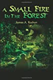 A Small Fire in the Forest, James A. Rozhon, 0595240992