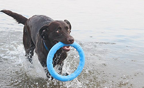 Dog Toys - Dog Training Equipment - Large Dog Toys - Toys for Dogs - Big Dog toys - Fetch Toy - Tough Dog Toys - Dog Tug Toy - Dog Ring Toy - Medium Dog toys - Dog Toy Ring by PitchDog (11, Green) by PitchDog (Image #5)
