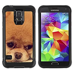 ZETECH CASES / Samsung Galaxy S5 SM-G900 / POMERANIAN JAPANESE SPITZ PUPPY DOG / pomeranian japonés perro de pomerania perrito perro / Robusto Caso Carcaso Billetera Shell Armor Funda Case Co
