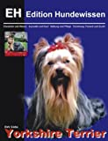 Yorkshire Terrier, Dirk Glebe, 3831131511