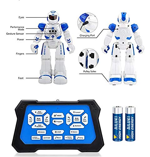 Buy remote control robot