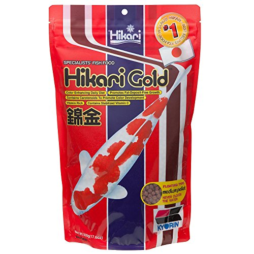 Hikari Usa Inc AHK02342 Gold 17.6-Ounce, Medium by Hikari Usa Inc.