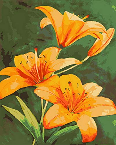 (aoyuff Painting by Number Frameless Oil Paint by Number for Home Decor Oil Picture Painting Yellow Lily)