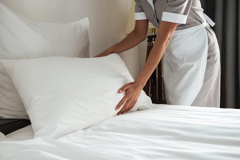 Premium 100% White Goose Down Firm Pillow, Set of 2 (Standard)