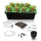 SavvyGrow Hydroponic Growing System Kit - 2 Large Airstones, Bucket with Air Pump - Complete Hydroponic Setup for Indoor Herbs, Seeds, Seedlings, Lettuce etc - Grow Super Fast at Home (8 Sites)
