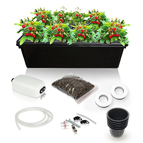 SavvyGrow Hydroponic Growing System Kit - 2 Large Airstones, Bucket with Air Pump - Complete Hydroponic Setup for Indoor Herbs, Seeds, Seedlings, Lettuce etc - Grow Super Fast at Home (8 Sites) (Aero Kit Complete)