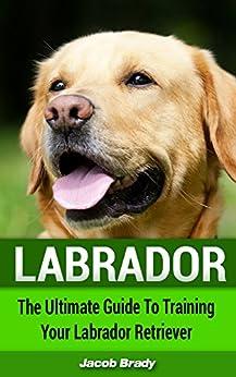 Best Dog Training Book Labrador
