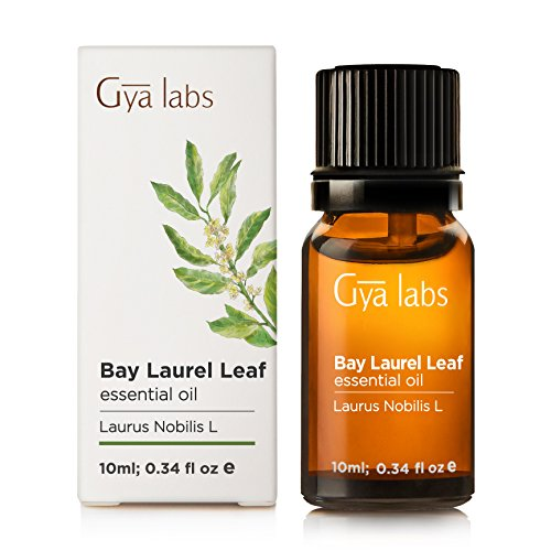 Bay Leaf Essential Oil   100  Pure Therapeutic Grade For Aromatherapy Diffuser   10Ml   Gya Labs