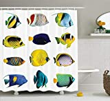 Fish Shower Curtain Walmart ROKS-ASD Ocean Animal Decor Shower Curtain, Tropical Fish Figures with Zebrasoma Anemonefish Dive Nemo Aqua Home Decor, Fabric Bathroom Decor Set with Hooks, 60x72 inches Extra Long, Multi