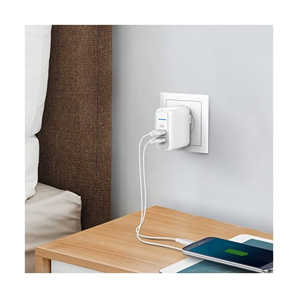 Anker-Elite-USB-Charger-Dual-Port-24W-Wall-Charger-PowerPort-2-with-PowerIQ-and-Foldable-Plug-for-iPhone-XsXS-MaxXRX876Plus-iPad-ProAir-2Mini-3Mini-4-Samsung-S4S5-and-More