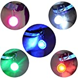 Carlie 5Pcs/Pack Clip on Dog Collar LED Lights Charms - Safety LED Lights for Dogs and Cats