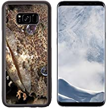 Luxlady Samsung Galaxy S8 Plus S8+ Aluminum Backplate Bumper Snap Case IMAGE ID: 20154383 Close up of a muppet like Oyster Toadfish