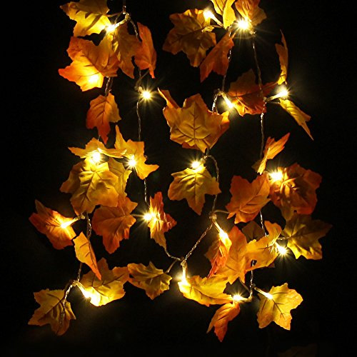Outdoor Thanksgiving Decorations Lighted in Florida - 8