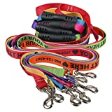 (US) Personalized Dog Leashes with Custom Hi-Def Text and Art, an Embroidered Dog Leash Alternative - Available in 6 Sizes (1 Pack)