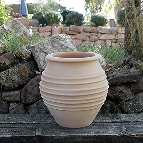 Kreta-Keramik - Jardinera de terracota hecha a mano, resistente a las heladas y a la intemperie, 35 cm, perfecta para balcón, jardín o terraza, Ficus: Amazon.es: Jardín