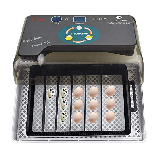 Egg Incubator, Digital Egg Incubator 9-35 Eggs Poultry Hatching with Automatic Egg Turning, Temperature and Humidity Control for Chickens Ducks Goose Birds Quail (Incubator Little Giant)