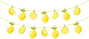 Kristin Paradise Lemon Banner, Citrus Lemonade Party Sign, Lime Birthday Decorations, Boy Girl Baby Shower Theme Supplies, Bday Kids 1st First Decor