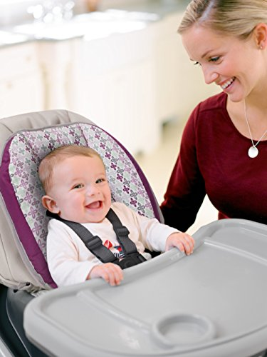 Graco Blossom 4-in-1 Convertible High Chair Seating System, Nyssa by Graco (Image #12)