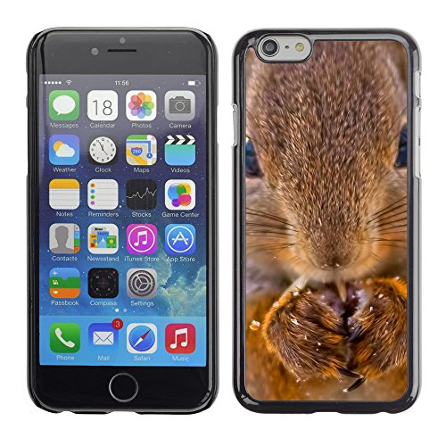 """Premio Sottile Slim Cassa Custodia Case Cover Shell // V00003906 thats comment le cookie crumbles // Apple iPhone 6 6S 6G PLUS 5.5"""""""