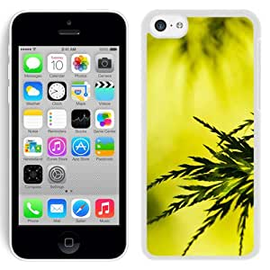 New Beautiful Custom Designed Cover Case For iPhone 5C With Summer Tree Leaves (2) Phone Case