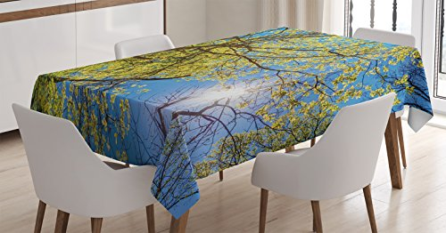 forest-home-decor-tablecloth-by-ambesonne-tree-branches-pastoral-lumber-wide-flourishing-natural-bea