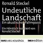 Undeutliche Landschaft   Ronald Steckel