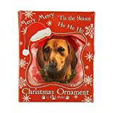 Product review for SumacLife ORNDOG005 Dog Collection Decorative Shatterproof Christmas Ball Ornament, , Tan Dachshund (Red)