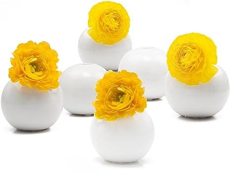 White Vase Round Vase